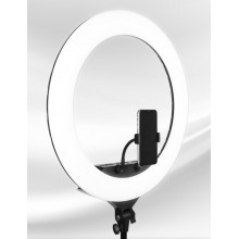 Zb-F288 Photo Studio Selfie LED Ring Light 14inch