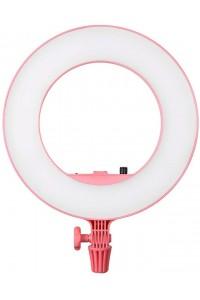 Godox LR180 Daylight Ringlight (Pink)