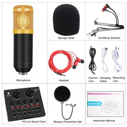 Professional BM 800 Studio Condenser Microphone Kit