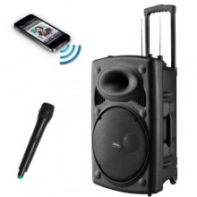 Rechargeable Bluetooth Karaoke PA Speaker System with Mic